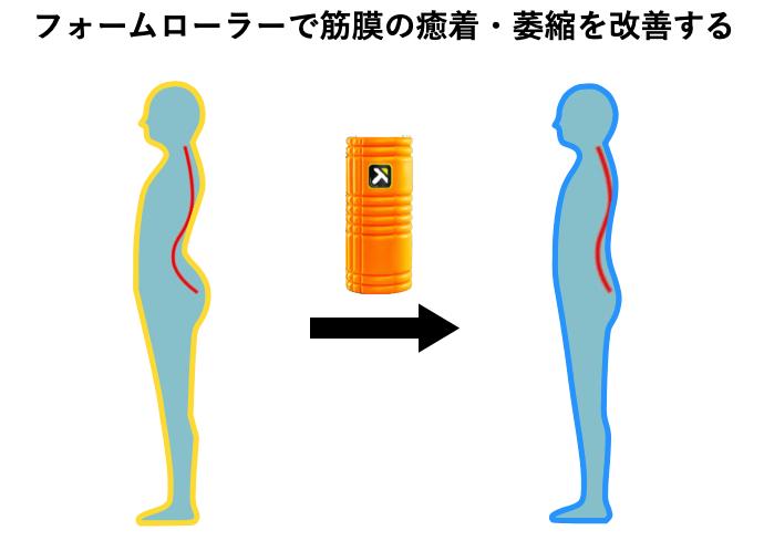 フォームローラーで筋膜の癒着を改善